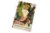 Karin kommer till klarhet som anteckningsbok